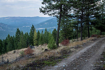 Photograph - Montana High Country Jeep Trail by Mick Anderson