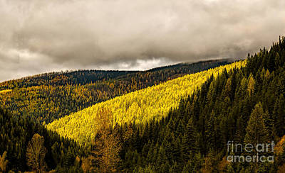 Photograph - Montana Highways by Jon Burch Photography