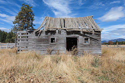 Photograph - Montana Homesteader Cabin by Fran Riley