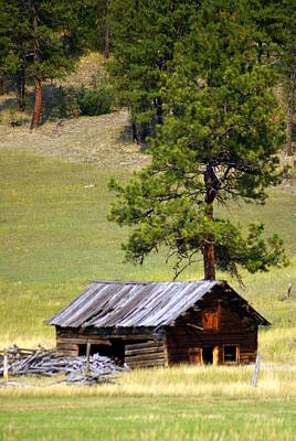 Montana Ranch 2 Art Print by Marty Koch