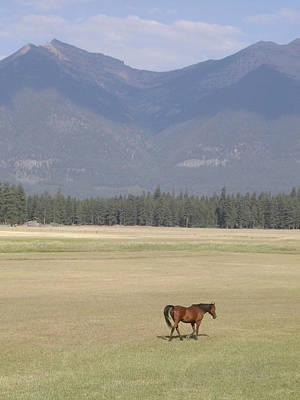 Montana Ranch Art Print by Lisa Patti Konkol