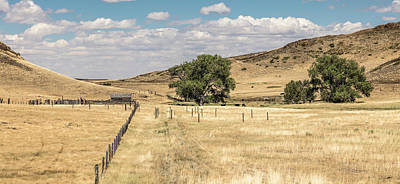 Photograph - Montana Ranch With Trees by John McGraw