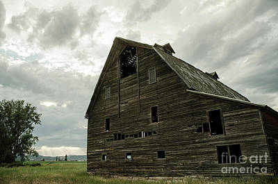 Photograph - Montana Relic by Nick Boren