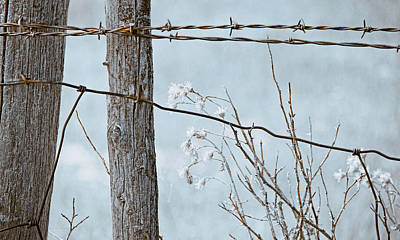 Photograph - Montana Rustic Fence And Weeds  Blue by Jennie Marie Schell