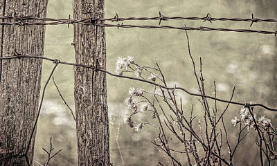 Photograph - Montana Rustic Fence And Weeds Sepia by Jennie Marie Schell