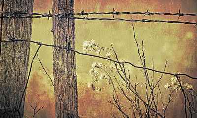 Photograph - Montana Rustic Fence And Wildflower Weeds  by Jennie Marie Schell