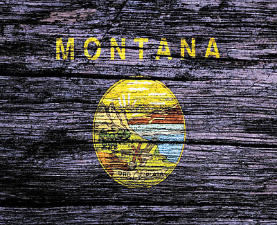 Yellowstone Mixed Media - Montana State Flag 3w by Brian Reaves