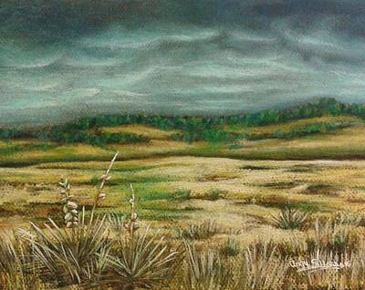 Native Plants Drawing - Montana Storm by Angie Sellars