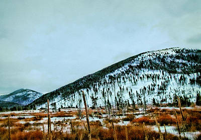 Montana View Art Print by Susan Kinney
