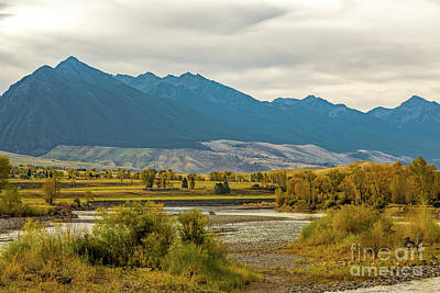 Gallatin River Photograph - Montana Yellowstone River View by Jon Burch Photography