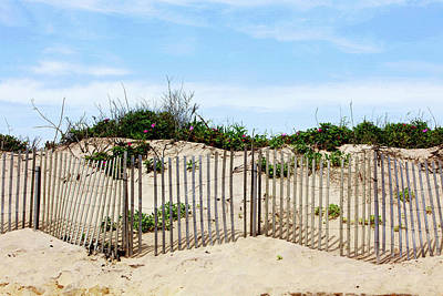 Sand Fences Photograph - Montauk Dunes by Art Block Collections