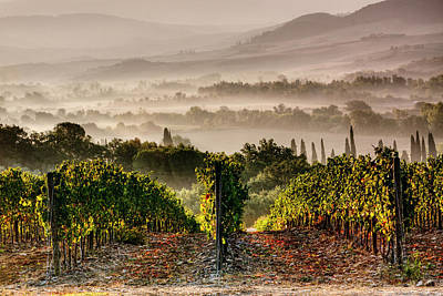 Photograph - Montepulciano Sunrise by John Frid