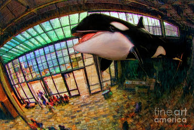 Photograph - Monterey Bay Aquarium Killer Whale by Blake Richards