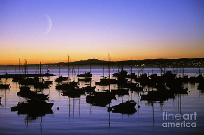 Photograph - Monterey Bay Boats by Michael Howell - Printscapes