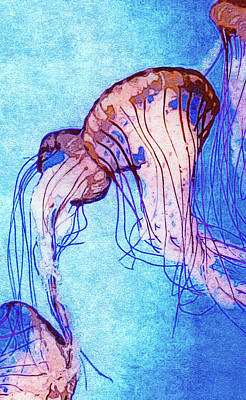 Invertebrates Mixed Media - Monterey Bay Jellyfish by Susan Maxwell Schmidt