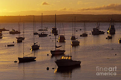 Photograph - Monterey Bay Sunrise by Jim Corwin