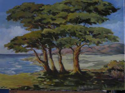 Monterey Bay Trees Art Print by Barbara Moore