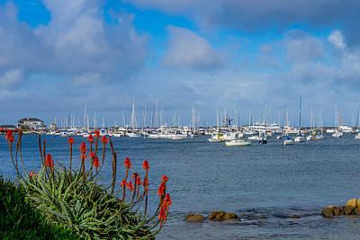 Photograph - Monterey Breakwater by Derek Dean