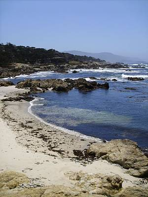 Photograph - Monterey, Ca by Anne