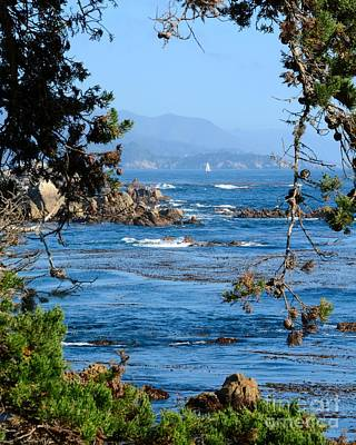 Photograph - Monterey Coast by Patrick Witz