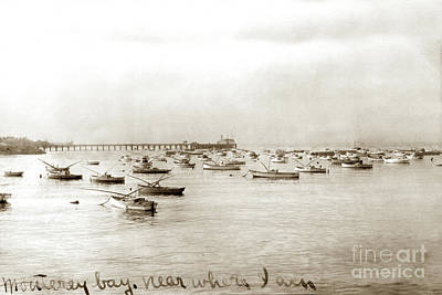 Photograph - Monterey Commercial Fishing Fleet At Anchor In Monterey Harbor.  by California Views Mr Pat Hathaway Archives