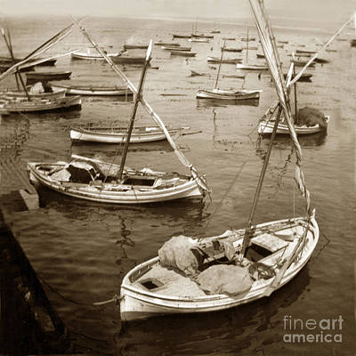Photograph - Monterey Fishing Fleet Of Lateen Sailboats 1902 by California Views Mr Pat Hathaway Archives