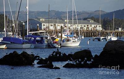 Photograph - Monterey Harbor And Wharf 2 by James B Toy