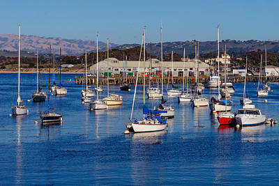 Photograph - Monterey Harbor by Derek Dean