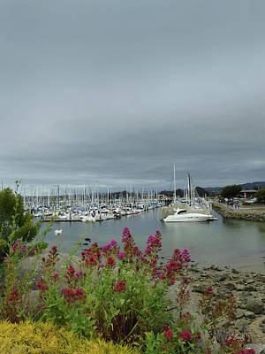 Phoenix Flowers Photograph - Monterey Harbor by Gordon Beck
