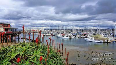 Photograph - Monterey Marina by Gina Savage