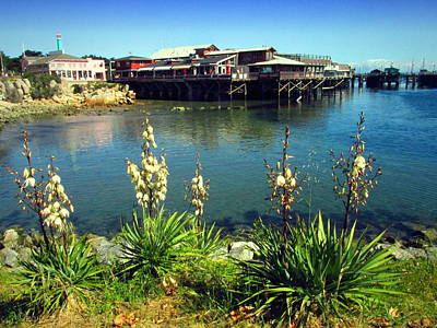 Photograph - Monterey Wharf And Yucca by Joyce Dickens