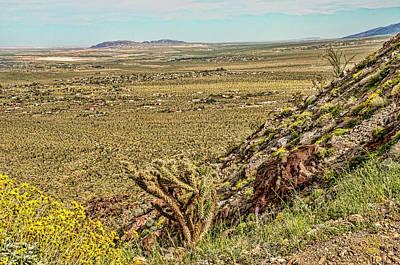 Photograph - Montezuma Rd-borrego Occitillo Wells View by Daniel Hebard