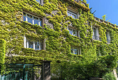 Digital Art - Montmarte Paris Ivy Covered Building by Carol Ailles
