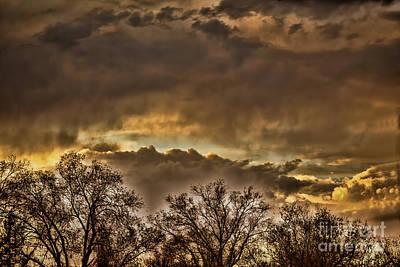 Photograph - Montrose Sunset by Steven Parker