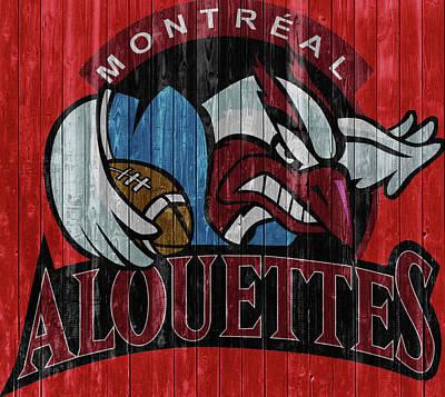 Mixed Media - Montreal Alouettes Barn Door by Dan Sproul
