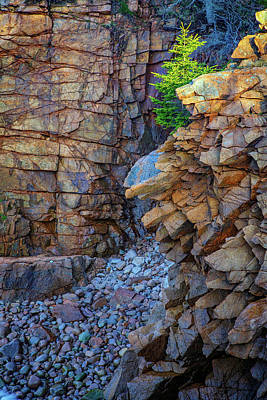 Monument Cove II Art Print by Rick Berk