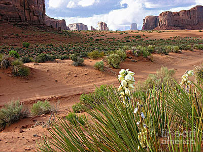 Photograph - Monument Valley #14 by Tom Griffithe