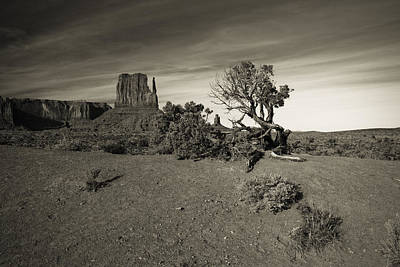 Photograph - Monument Valley 3 by Avril Christophe