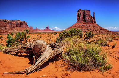 Photograph - Monument Valley Desert  by Carolyn Derstine