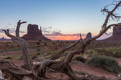 Photograph - Monument Valley Sunrise With Wood  by John McGraw