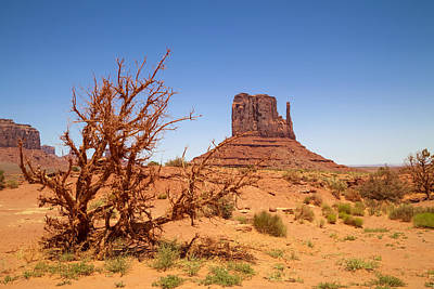 Navajo Nation Photograph - Monument Valley West Mitten Butte And Landscape by Melanie Viola