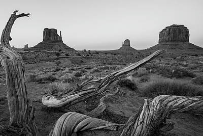 Photograph - Monument Valley With Tree Black And White  by John McGraw