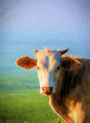 Photograph - Moo by JC Findley