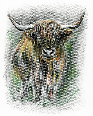Drawing - Moo by MM Anderson