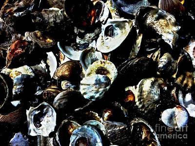 Mood Indigo Seashells Art Print by Sheila Mccaffery