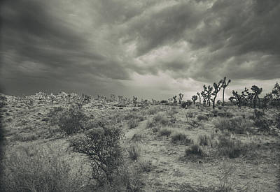 Photograph - Moods Of The Desert by Kunal Mehra