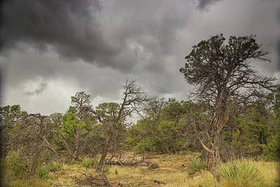 Photograph - Moods Of The Mesa by Kunal Mehra