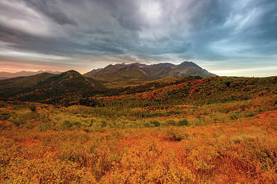 Photograph - Moody Autumn Morning by Johnny Adolphson