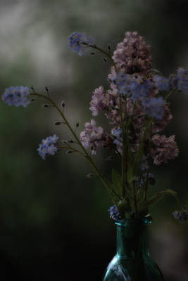 Photograph - Moody Bouquet by Bonnie Bruno
