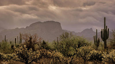 Photograph - Moody Desert Skies  by Saija Lehtonen